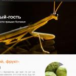 dvoyni.ru